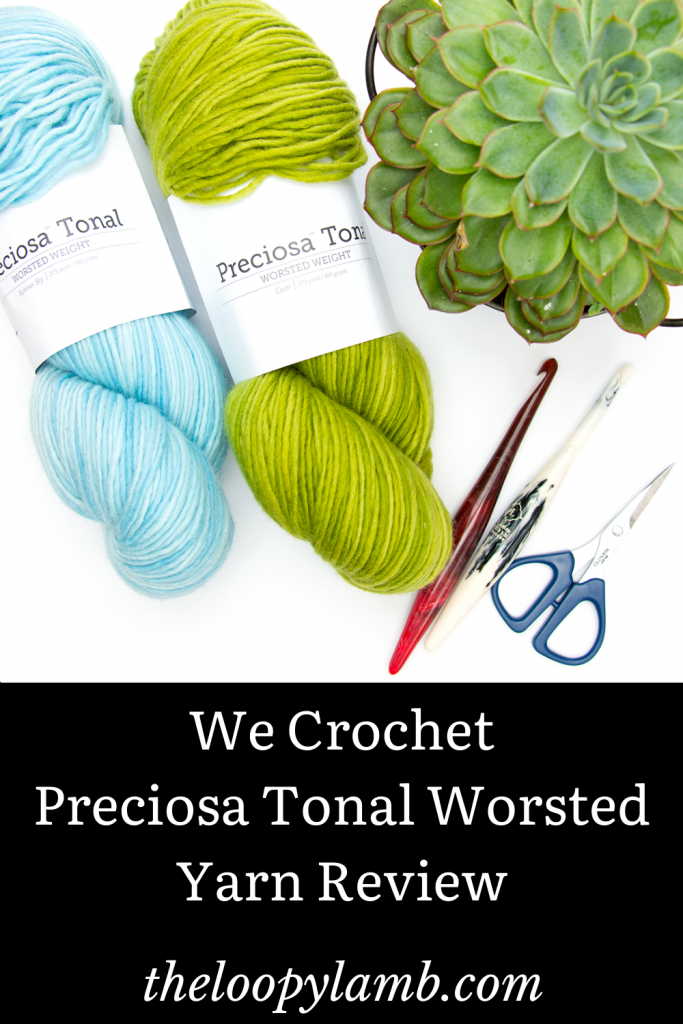 Two hanks of Preciosa Tonal Worsted Weight yarn in blue and green