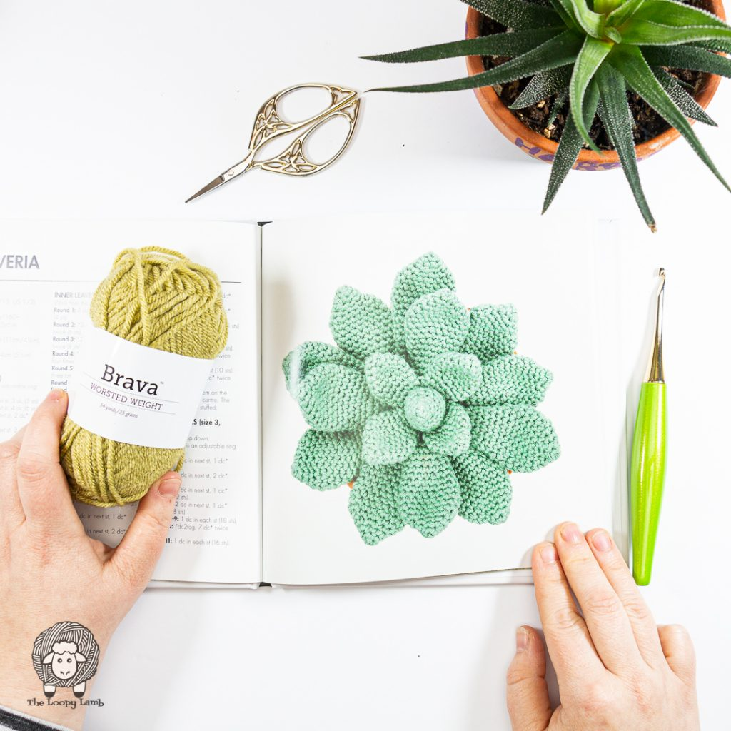 Crochet succulent pictured in a book with a crochet hook, yarn and scissors