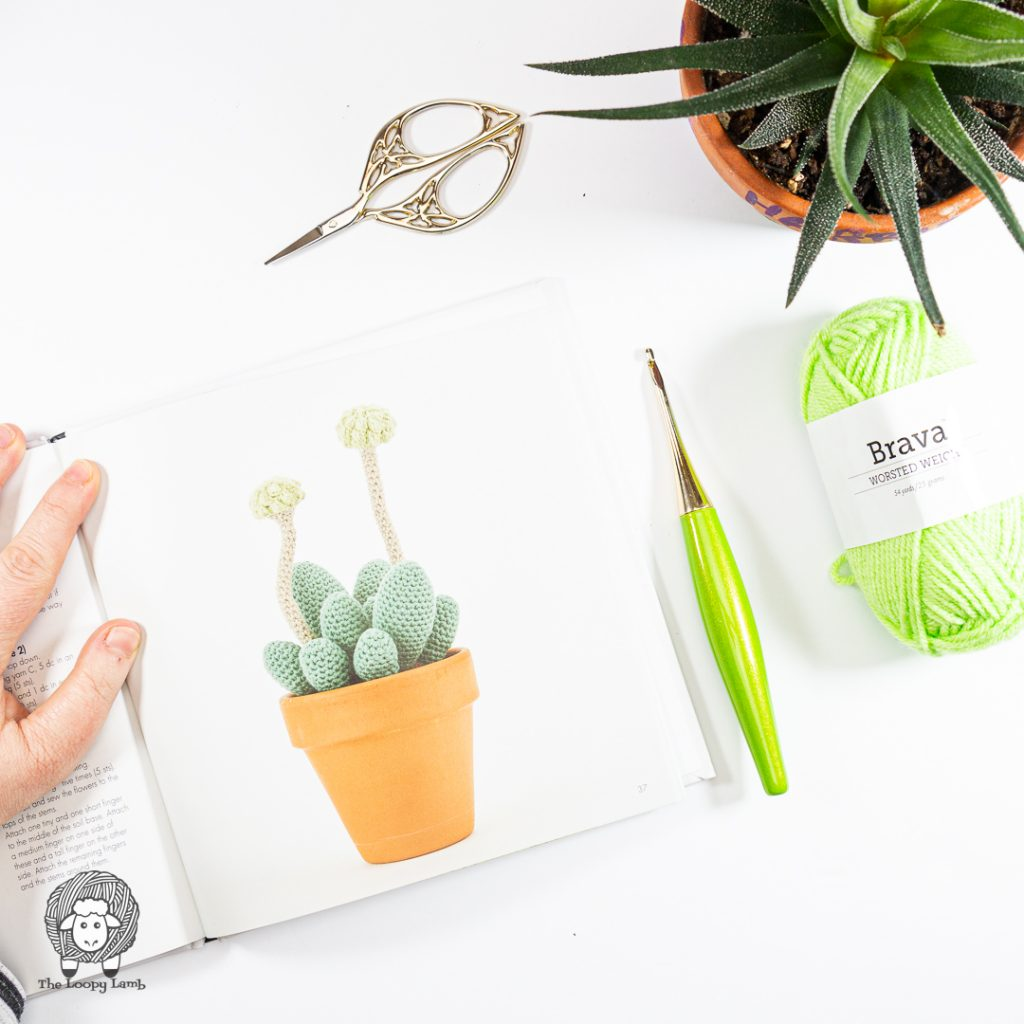 Picture of a project from the book Stylish Succulents to Crochet by Sarah Abbondio