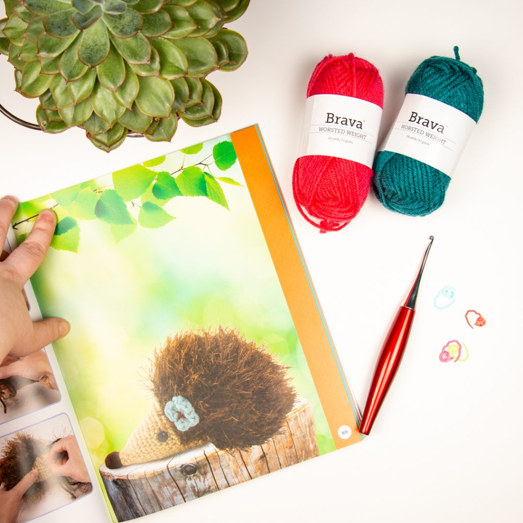 Image from the book being reviewed in a flat lay with yarn and a crochet hook